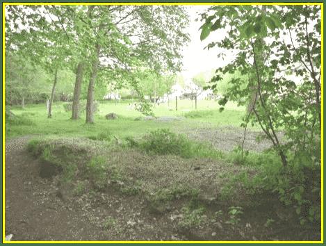 image3061